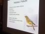 """Blíži sa koniec októbra a to je i čas, kedy už všetky sťahovavé vtáky presídlili na juh. A práve o tom, ako sa operené vtáčie Bytosti tejto Zeme každoročne premiestňujú tisícky (ba dokonca i 10 tisícky ) kilometrov a o tom ako tento proces presídľovania """"vtáčieho """"národa"""" prebieha nám dnes (26. 10. 2017) v Dobrej čajovni pri lahodnej šálke koreneného čaju """"masala"""" porozprával RNDr. Zdeněk Tyller."""